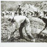 太行区部队指战员在一起开荒种地。