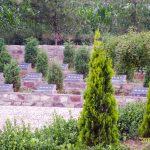 赵垴公墓1