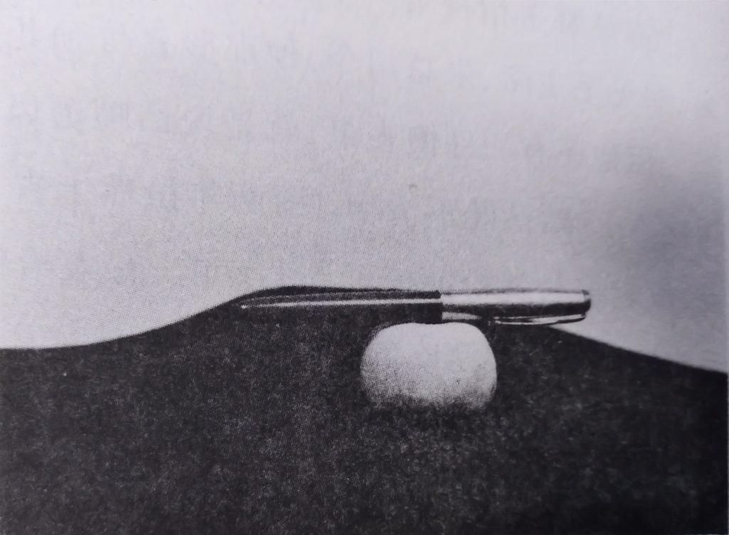 毛泽东赠送石玉苹果殿的玉石和钢笔