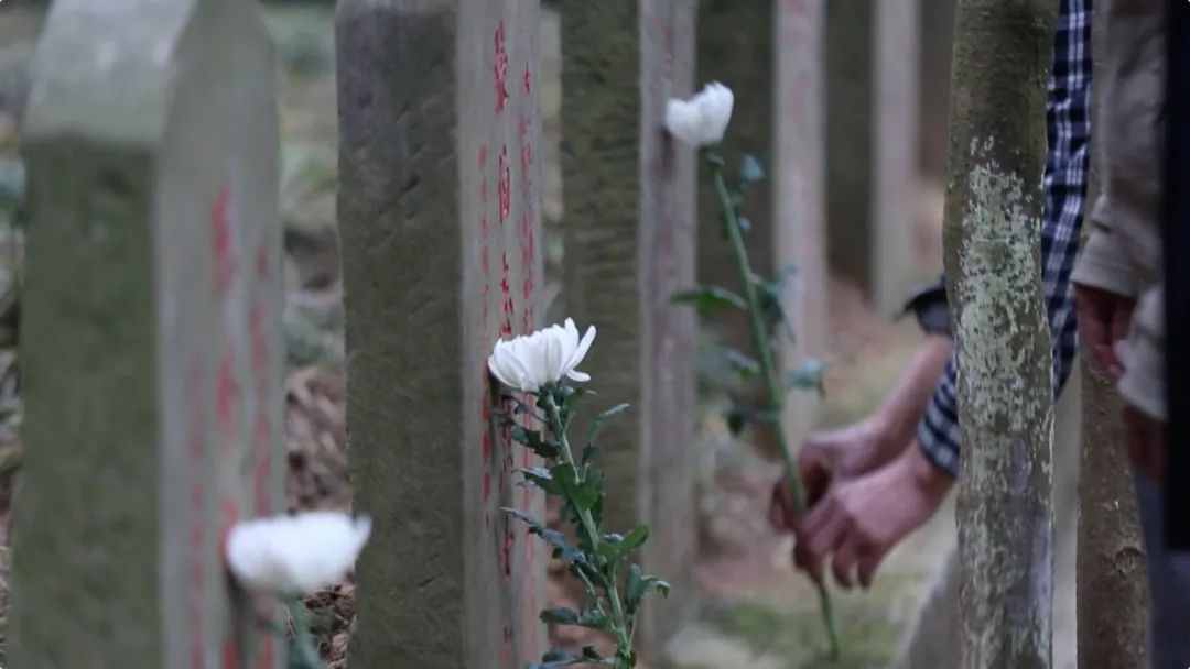 17225座墓碑没有名字,只有一颗五角星,一家三代却守了86年!