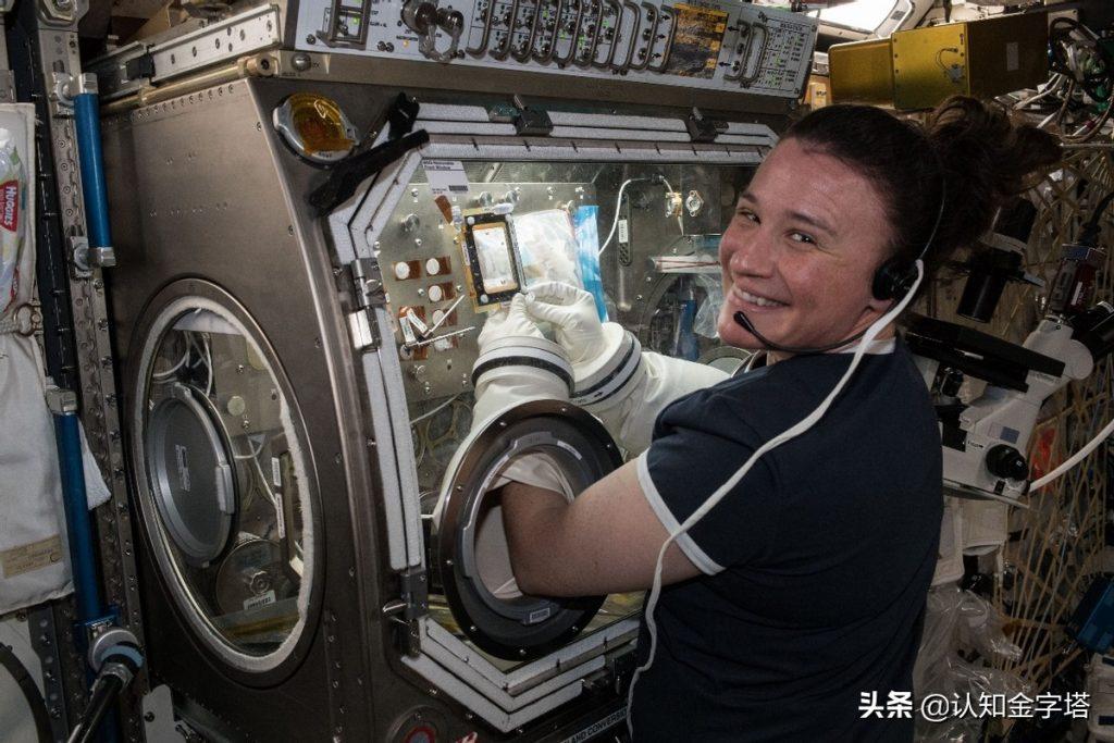 在空间站工作的塞丽娜·奥农-钱赛勒 图自美国国家航空航天局推特