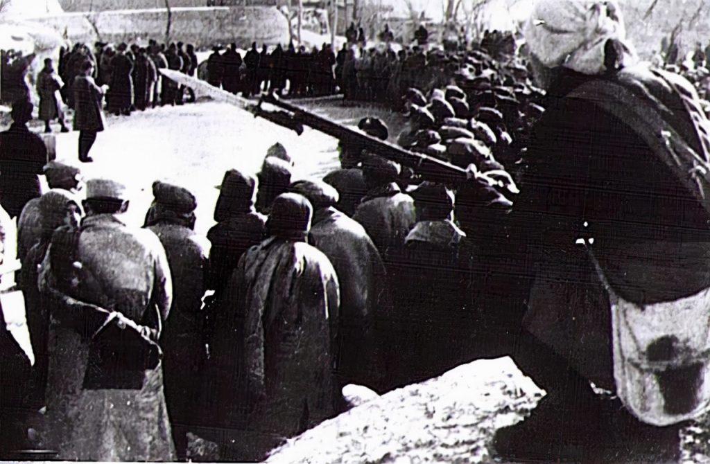 大杨湖战斗中被俘的敌官兵