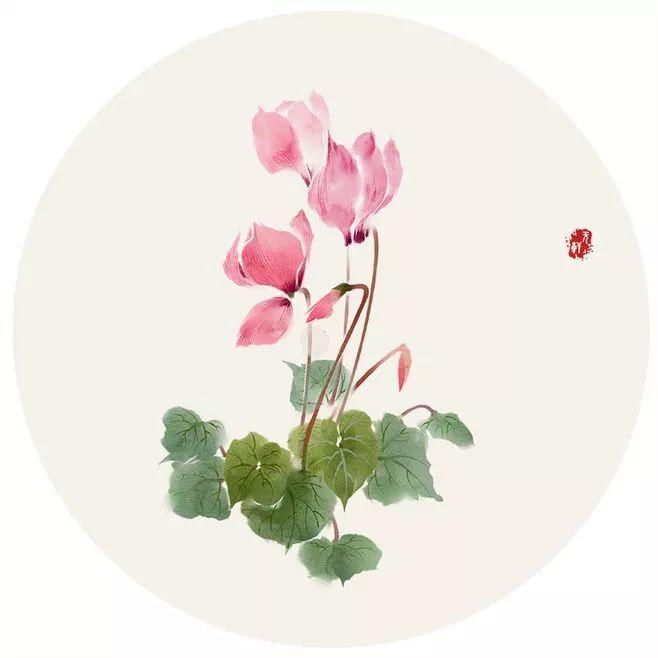 今日重阳节:又是九月九,但愿人长久!